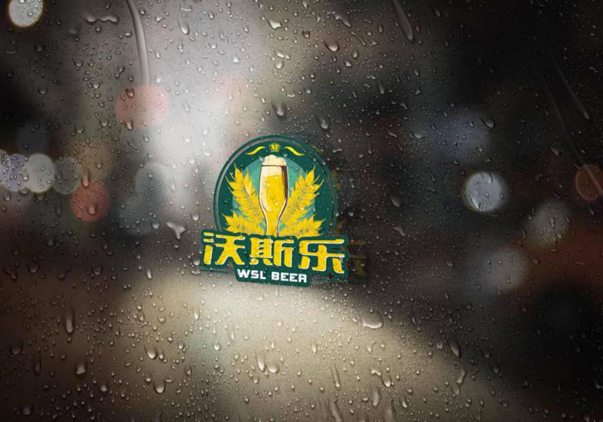 湖南沃斯乐啤酒有限公司7