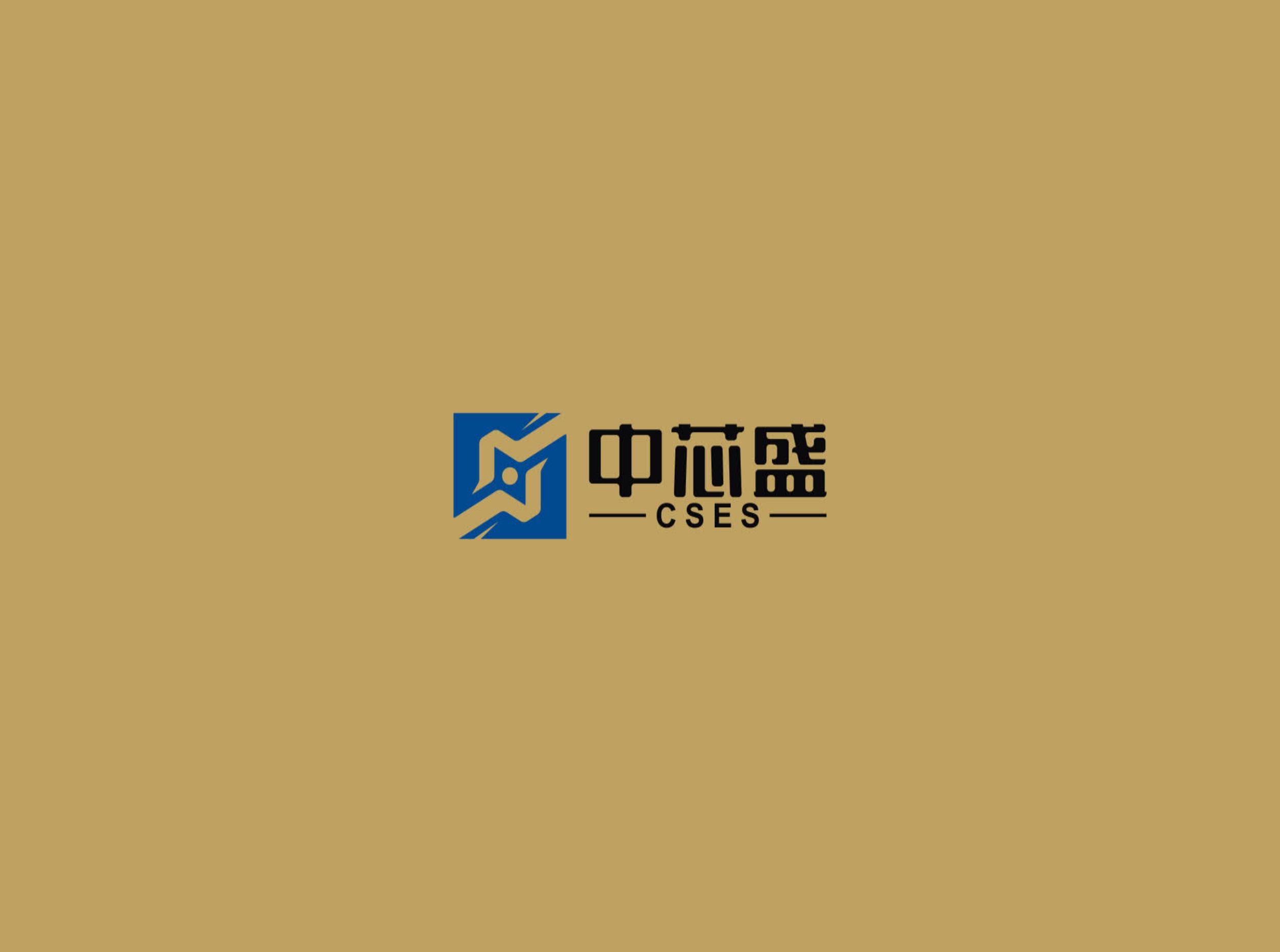 上海中芯盛半导体设备有限公司3